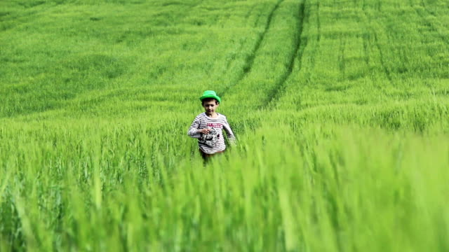 boy in green hat running on the green field among green grass, front view video