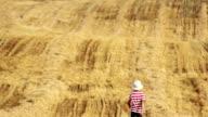 boy is in a yellow field, boy is in the straw, boy go on mown field video