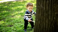Boy playing in the park video