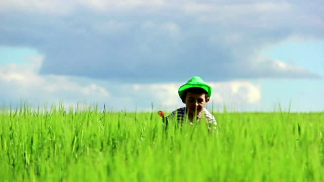 boy playing war in the wheat growing in the green field on sky background video