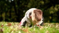 Boy playing with magnifying glass outdoors video