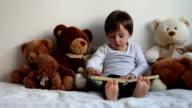 Boy, reading a book, educating, teddy bears around him video