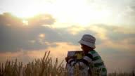 boy reads a book in the field, beautiful clouds, mown field video