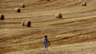 boy runs on the field, around the haystacks mown field, sunny day video
