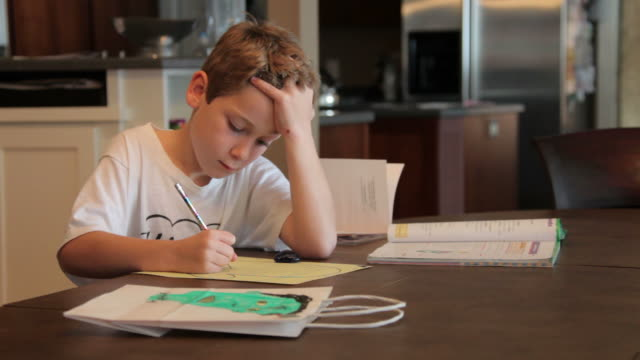 Boy Studying his Homework video