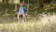 SLO MO DS Boy swinging under a tree in nature video