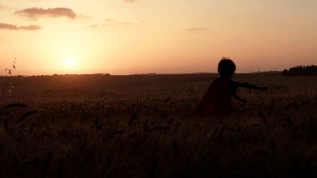 Boy with a superhero cape running in a golden wheat field video