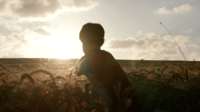Boy with a superhero cape standing in a golden field video