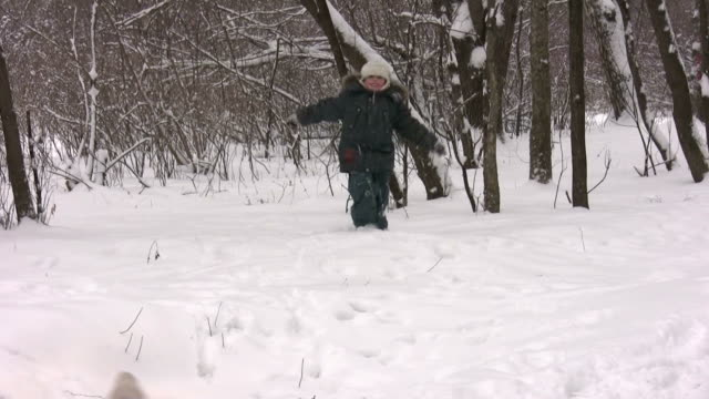 boy with dog in winter wood video