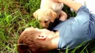 Boy with labrador puppy in garden video