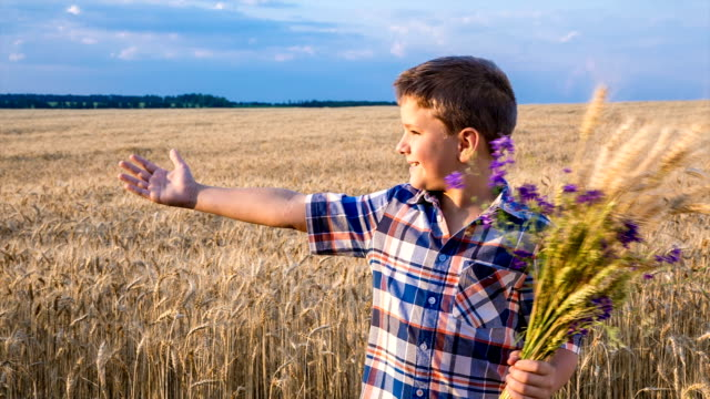 boy with sheaf of wheat pointing to golden field video