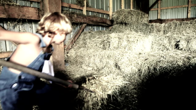 Boy Working In Barn video