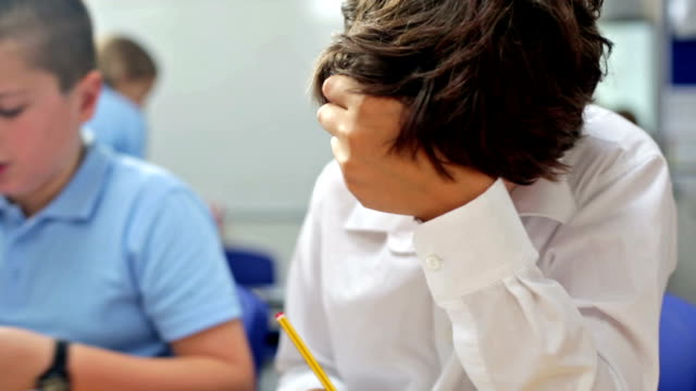 Boys Learning in The Classroom video