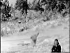 Boys play in the snow--From 1930's film video