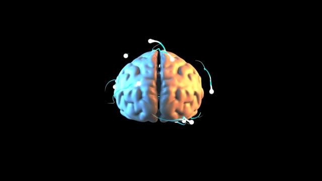 Brain - 3D Animation video