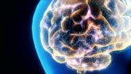 Brain Neuron Activity video