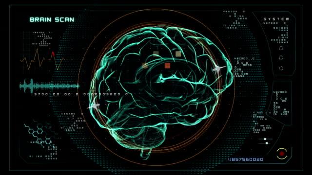 Brain Scan data interface video