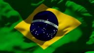 Brazil Flag and International Soccer Ball video