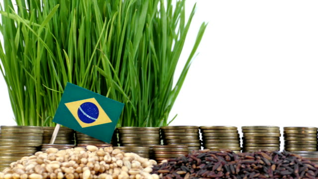 Brazil flag waving with stack of money coins and piles of wheat video