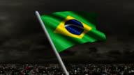 Brazilian Flag Animation video