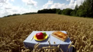 Bread and vegetables on the table in wheat field, time lapse video