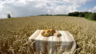 Bread on the table in wheat field, time lapse video