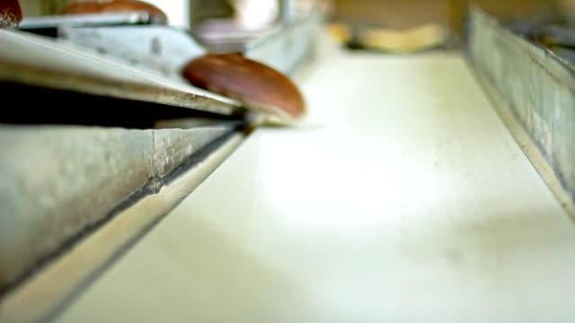 Bread production line. Food conveyor line. Black bread production process video