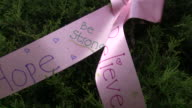 Breast Cancer 3-Day Race for the Cure video