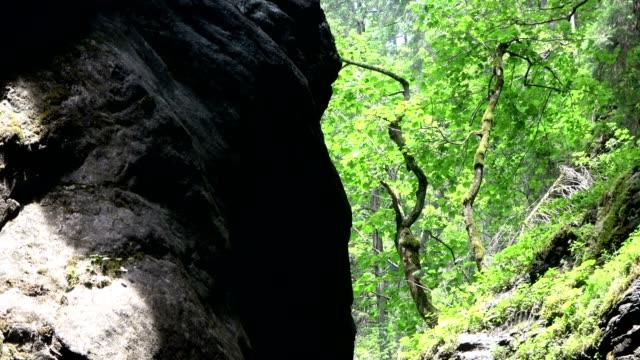 Breitachklamm, canyon, erosion, contrast, plant growth, diversity, Allgäu, bavaria, tourismus, miracle of nature, 4K video