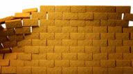 Bricks video