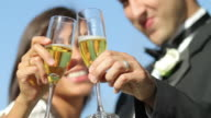 Bride and groom at wedding toasting with champagne video