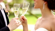 Bride and groom enjoying champagne on their wedding video