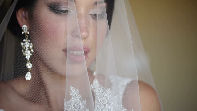 Bride Covered With Veil video