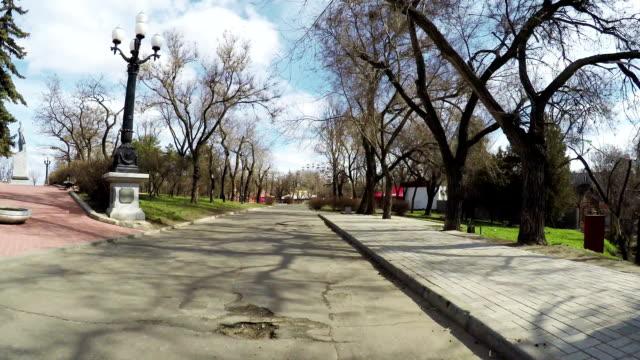 Bridge over river in park video