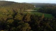 AERIAL: Bridge road leading over the vast green swamp landscape video