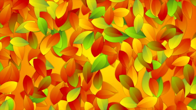 Bright autumn leaves abstract video animation video