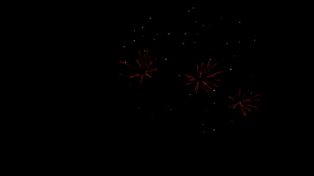 Bright beautiful colorful fireworks againts dark night sky. Festive celebration vibrant explosions video