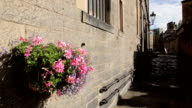 Bright flower basket in a quiet stone walled city centre video