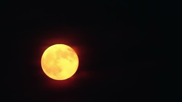 Bright Orange Harvest Moon video