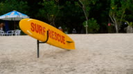 Bright yellow and red surfboard is lying on the sandy beach of Bali island. Multicolour board for surfing is standing on the lonely sand of one of Indonesian seashores video