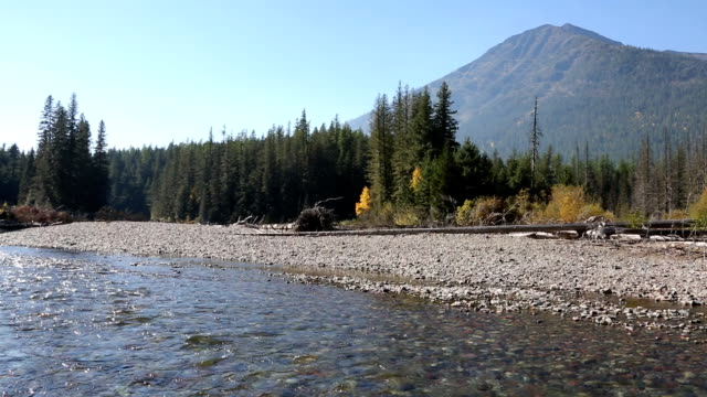 Broad Mountain River and Forest video