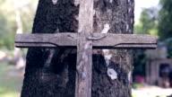 Broken cross in cemetery, Trees, Lights video