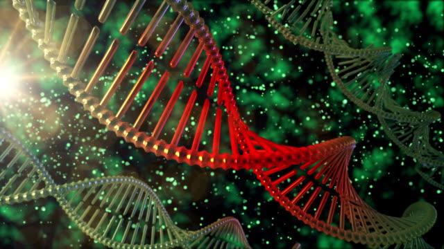 Broken DNA String video