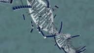 Broken DNA video