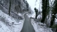 Broken Trees By The Roadside video