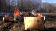 Brown cardboard boxes with organic rubbish burning in field video
