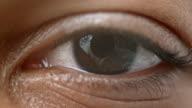 ECU Brown colored iris of a human eye video
