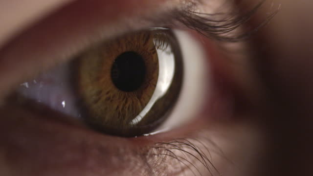 4K - Brown Human Eye video