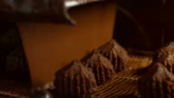 Brown sweets on conveyor belt. video