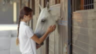 SLO MO DS Brunette female feeding a white horse in the stable video